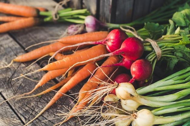 Свежие органические овощи из сада на деревенском деревянном фоне. концепция здорового питания