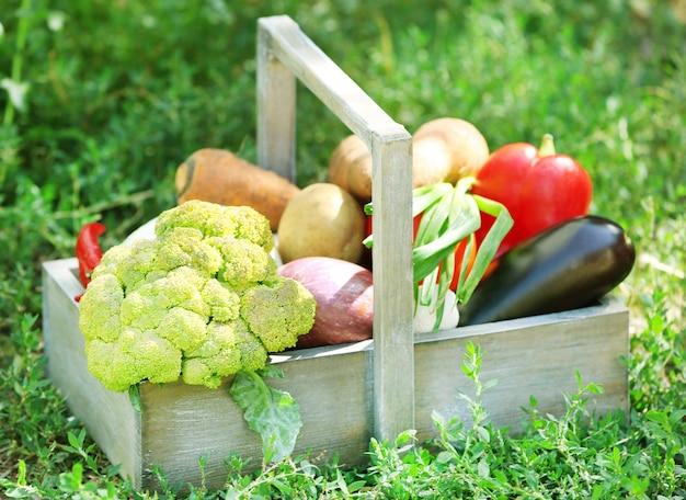 Свежие органические овощи в деревянном ящике на открытом воздухе