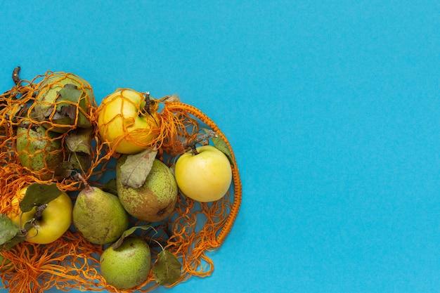 Свежие органические желтые яблоки и зеленые груши с листьями в оранжевой сетке на синем фоне