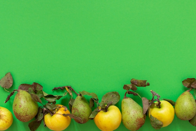신선한 유기농 노란 사과와 녹색 벽에 잎 녹색 배