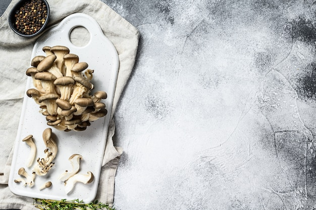 Fresh oyster mushrooms on a white chopping board with thyme. gray background. top view. space for text