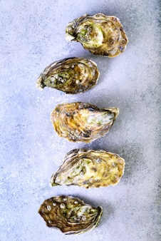 Fresh oysters on grey concrete stone. top view, copy space