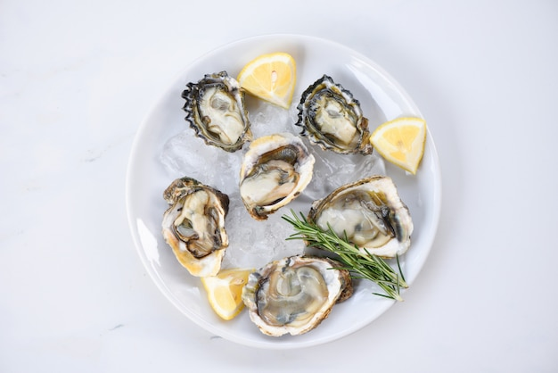 Fresh oysters seafood on white plate background - open oyster shell with herb spices lemon rosemary served on table and ice healthy sea food raw oyster dinner in the restaurant gourmet food