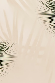 Fresh palm leaves on beige background