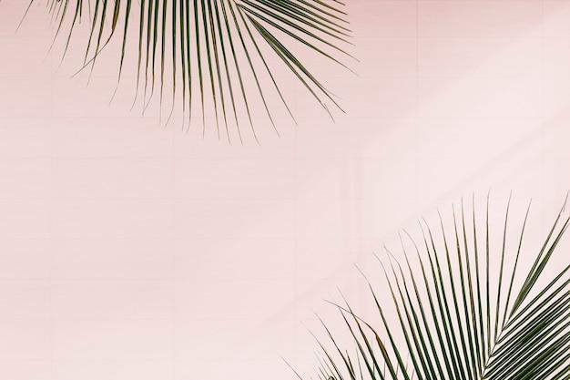 ピンクの背景に新鮮なヤシの葉