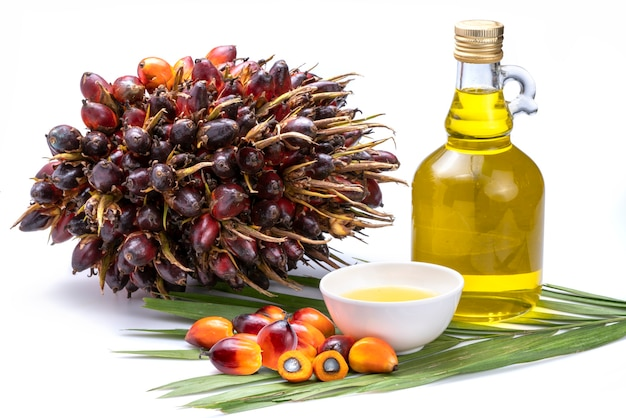 Fresh palm oil fruits and cooking in glass bottles, palm oil on a palm leaves isolated on the white background.