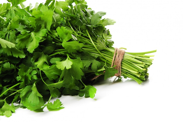 Fresh parsley isolated