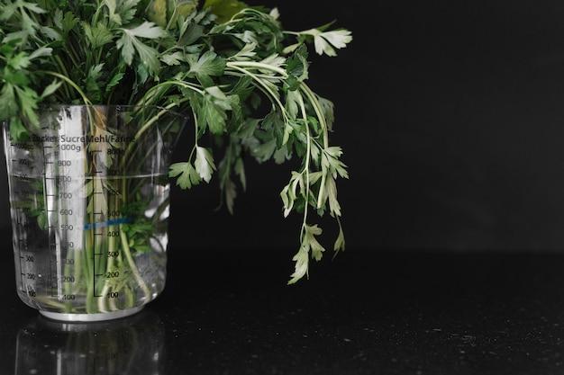 Fresh parsley in measuring jar on black background