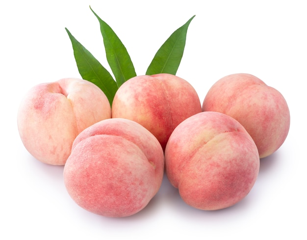 흰색 배경에 고립 된 신선한 복숭아 열매