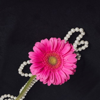 Fresh pink bloom with yellow center near beads