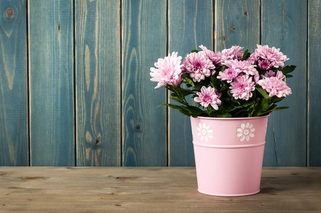양동이에 신선한 분홍색 국화 꽃