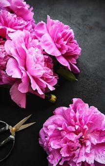 新鮮なピンクの牡丹の花は、黒い表面のコピースペースと国境を接します