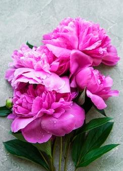 Свежие розовые цветы пиона граничат с копией пространства на серой бетонной поверхности, плоская планировка