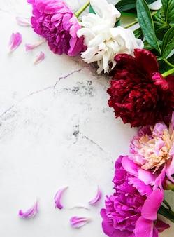 흰색 대리석 배경, 평면 누워에 복사 공간 신선한 분홍색 모란 꽃 테두리.