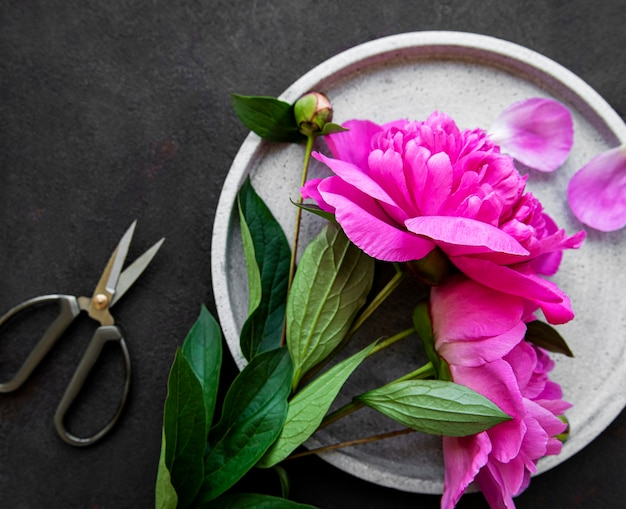 Fresh pink peony flowers on a concrete plate with copy space on black background, flat lay.