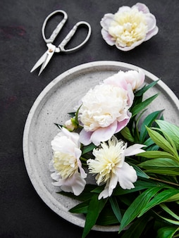 Fresh pink peony flowers on a concrete plate with copy space on black surface flat lay