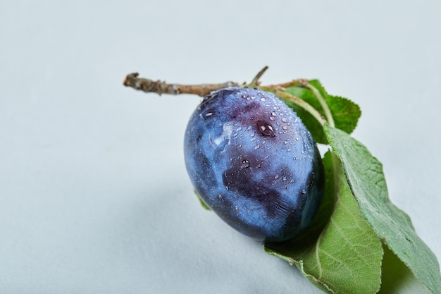 青に分離された葉を持つ新鮮な梅。