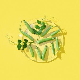 노란색에 유리 접시에 신선한 잎 녹색 완두콩의 신선한 포드