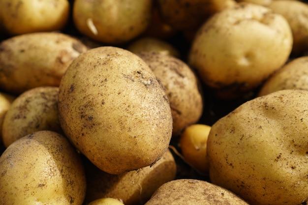 Fresh potato lying on the ground, good harvest and organic food.