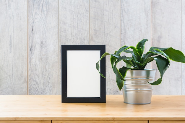 Fresh potted house plant and photo frame on the wooden desk