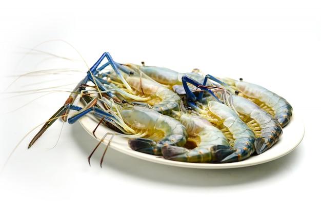Fresh prawn, river shrimp on white plate.