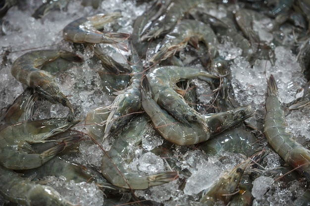 Fresh prawns are on ice for sale in the market.