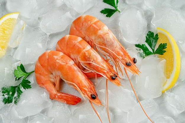 Fresh prawns on ice with parsley and lemon slices. mediterranean food concept