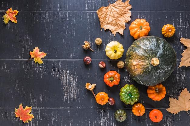 Fresh pumpkins and dry foliage