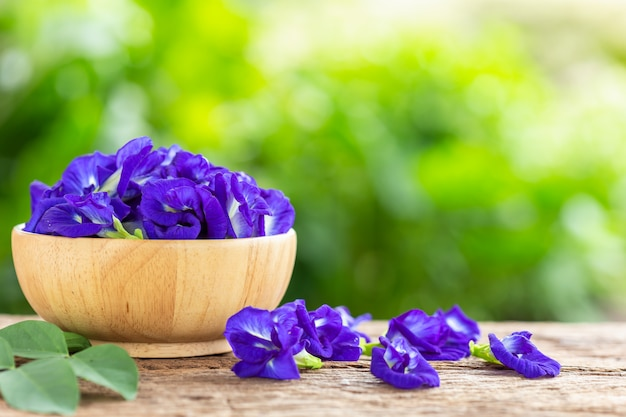木製のテーブルの背景に新しい紫の蝶のエンドウ豆の花