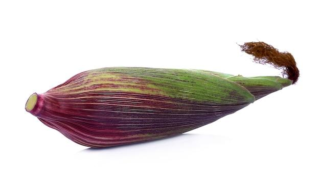 흰색 배경에 고립 된 신선한 보라색 옥수수