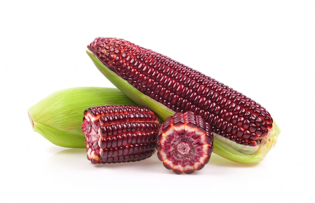 Fresh purple corn isolated on white space