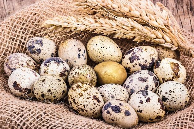 Fresh quail eggs and ears of wheat