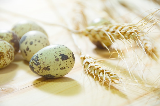 Fresh quail eggs, rustic style on wood surface