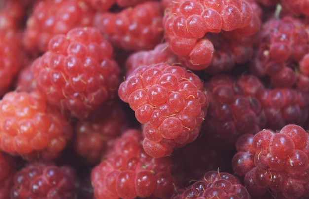 Fresh raspberries background closeup