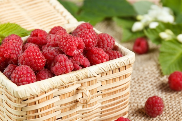 Fresh raspberries in a wicker box and honey, green leaves.