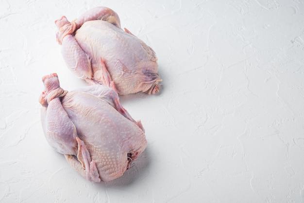 신선한 생 닭고기