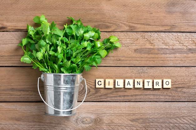 Fresh raw cilantro bunch in metal bucket on wooden background