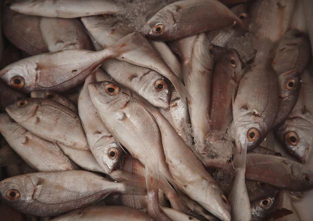市場の新鮮な生の魚、食品の背景