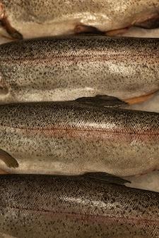 氷の上で新鮮な生の魚。健康的なダイエット食品。上面図。閉じる。垂直。