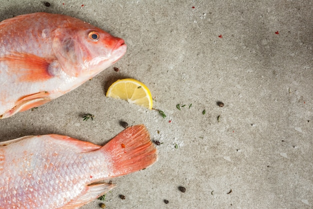 Fresh raw fish pink tilapia with spices for cooking - lemon salt pepper herbs on gray stone table