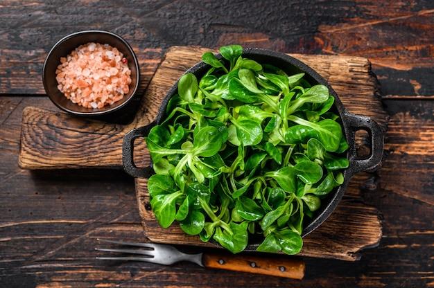 Fresh raw green lambs lettuce corn salad leaves in a pan