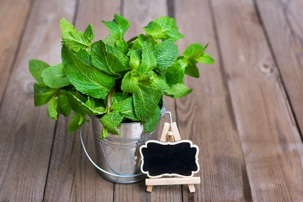 Fresh raw mint bunch in metal bucket on wooden background, selective focus
