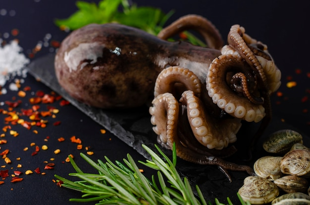 Fresh raw octopus with clams and ingredients for cooking on black slate board on dark background