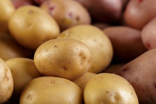 신선한 생 감자