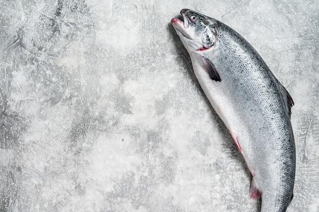 キッチンテーブルの新鮮な生鮭赤丸ごとの魚。灰色の背景。