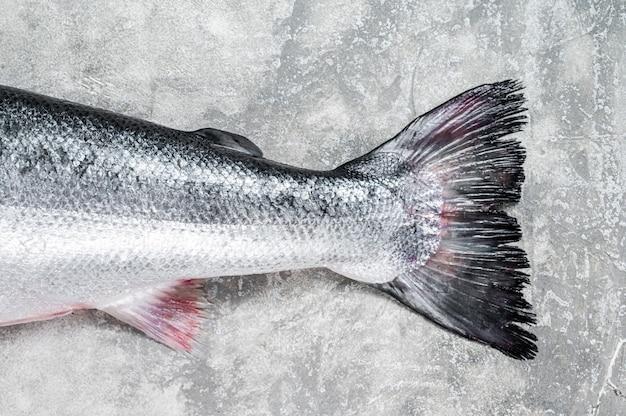 Свежий сырой лосось красная целая рыба на кухонном столе