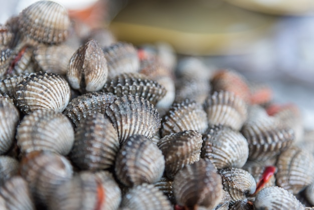 Fresh raw sea cockles clams display for sale at seafood market or thai street food Premium Photo