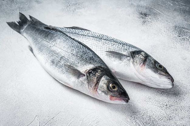 식탁에 신선한 원시 농어 물고기. 흰색 배경. 평면도.