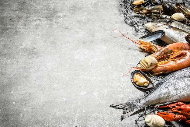 Свежие сырые морепродукты. свежие морепродукты с рыболовной сетью. на каменном фоне.
