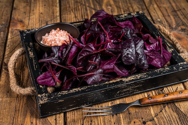 Свежие сырые листья салата из швейцарского рубина или мангольда на деревянном подносе
